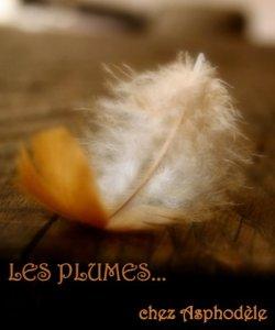 logo-plumes-aspho-4-c3a8me-tirc3a9-du-tumblr-vanishingintoclouds